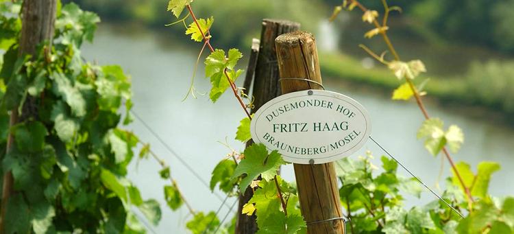 wina niemieckie